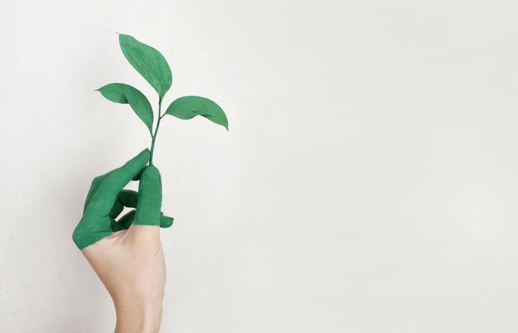 Nachhaltigkeit in der Krise?!